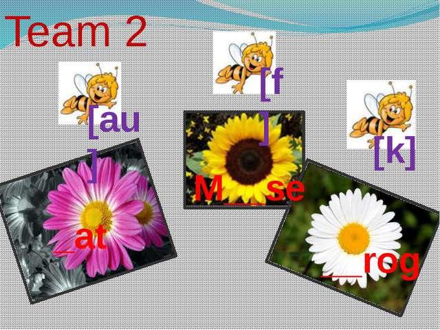 Team 2 _at [k] M__se [au] __rog [f]