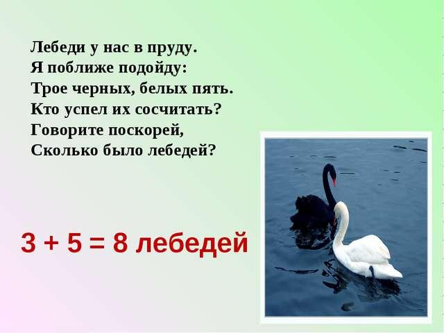 Лебеди у нас в пруду. Я поближе подойду: Трое черных, белых пять. Кто успел и...