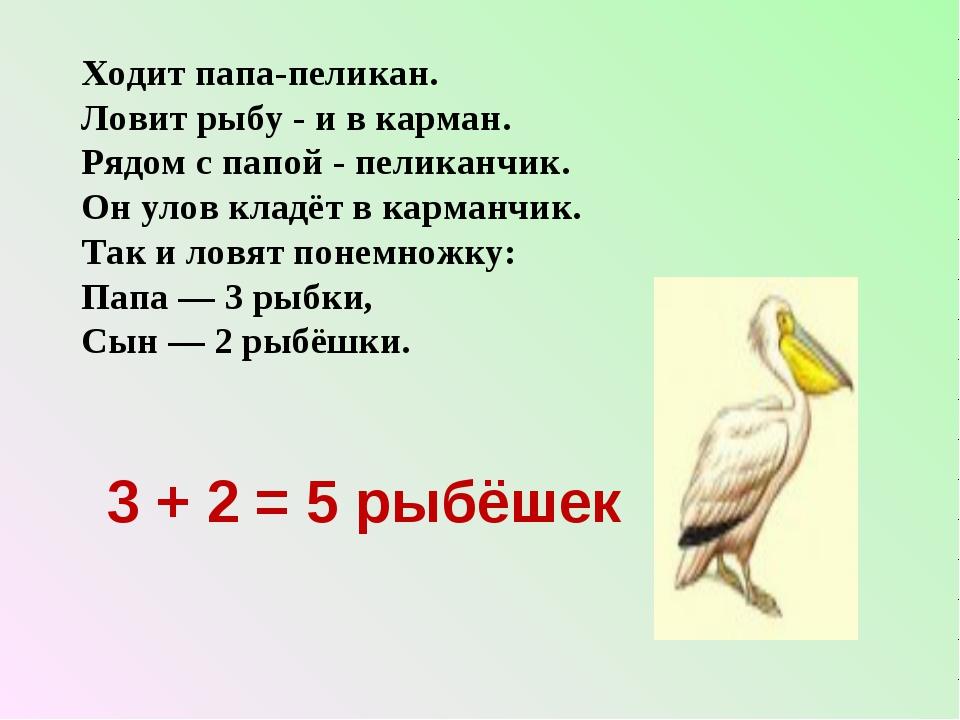 Ходит папа-пеликан. Ловит рыбу - и в карман. Рядом с папой - пеликанчик. Он у...