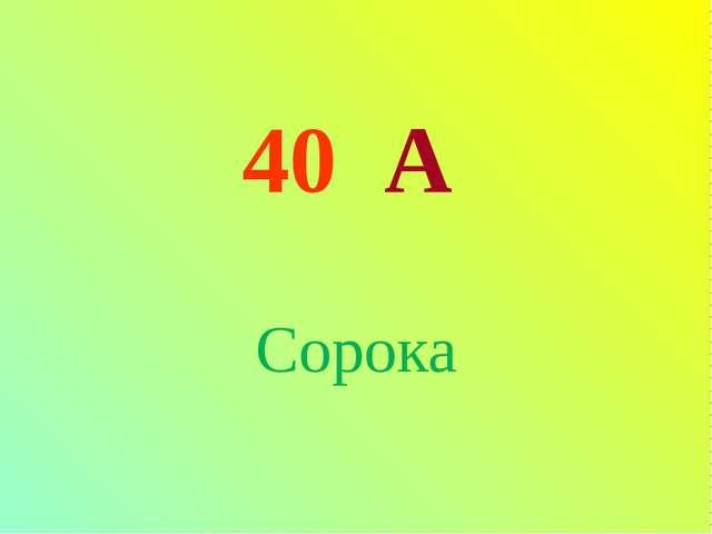 40 А Сорока