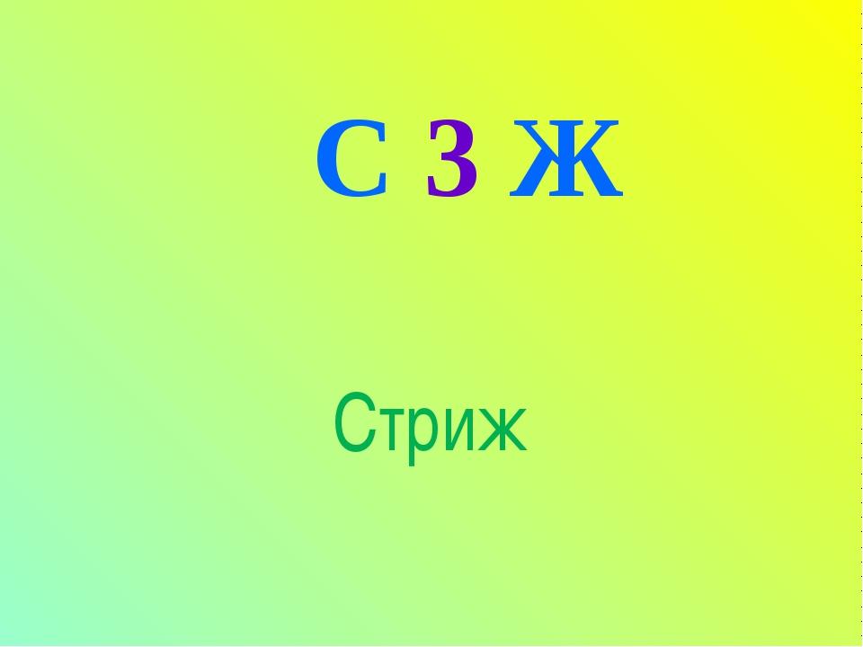 С 3 Ж Стриж
