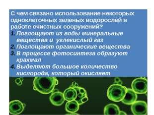 С чем связано использование некоторых одноклеточных зеленых водорослей в рабо