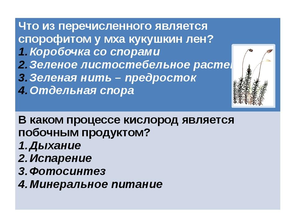 Что из перечисленного является спорофитом у мха кукушкин лен? Коробочка со сп...