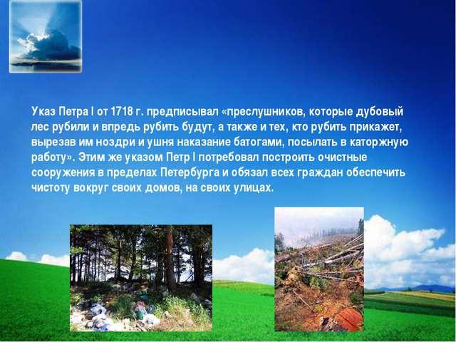 Указ Петра I от 1718 г. предписывал «преслушников, которые дубовый лес рубили...