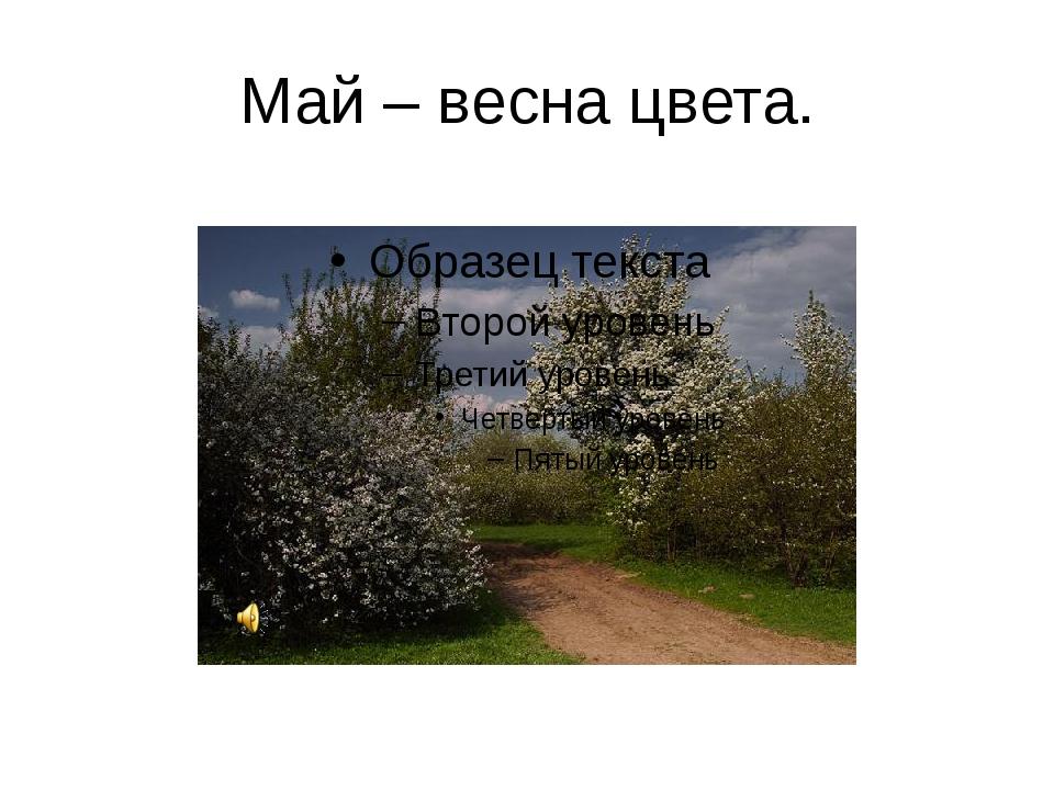 Май – весна цвета.