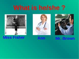 What is he/she ? Miss Fisher Ann Mr. Brown
