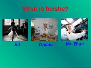 What is he/she? Jill Dasha Mr. Blue
