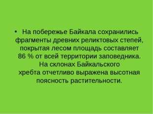На побережье Байкала сохранились фрагменты древних реликтовых степей, покрыт