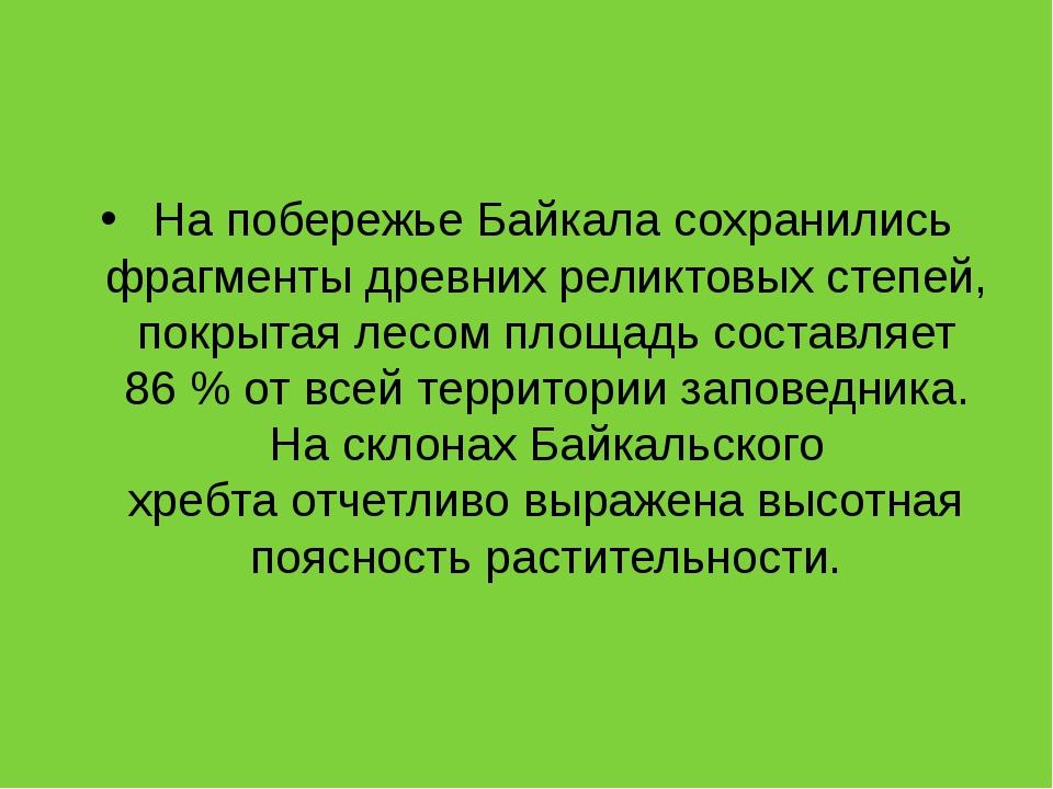 На побережье Байкала сохранились фрагменты древних реликтовых степей, покрыт...