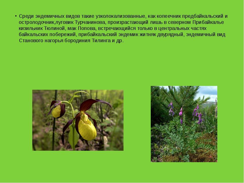 Среди эндемичных видов такие узколокализованные, как копеечник предбайкальски...