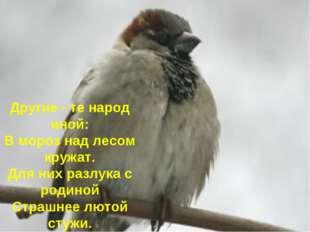 Другие - те народ иной: В мороз над лесом кружат. Для них разлука с родиной С