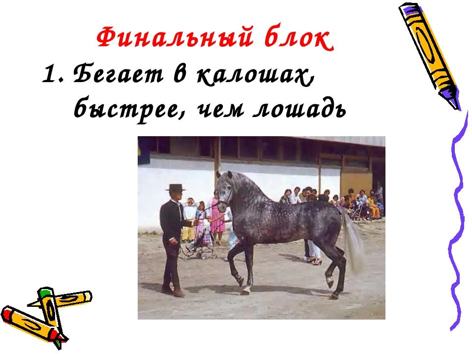 Финальный блок Бегает в калошах, быстрее, чем лошадь