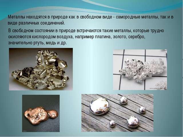 Металлы находятся в природе как в свободном виде - самородные металлы, так и...