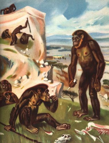 древнейшие люди конспект урока биологии