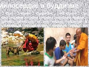 Милосердие в буддизме Всё учение буддизма построено на сострадании ко всем ж