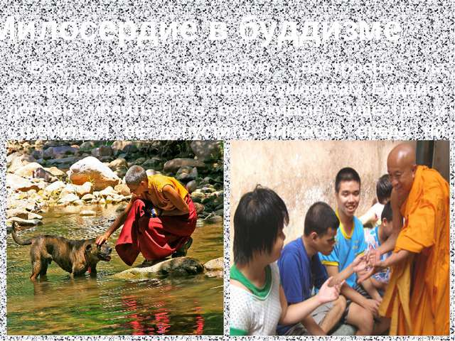 Милосердие в буддизме Всё учение буддизма построено на сострадании ко всем ж...