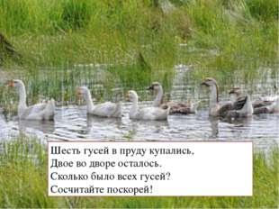 Шесть гусей в пруду купались, Двое во дворе осталось. Сколько было всех гусей