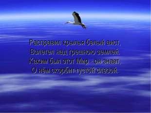 Расправил крылья белый аист, Взлетел над грешною землей. Каким был этот Мир -