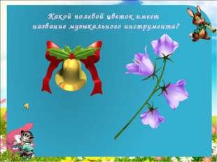 Какой полевой цветок имеет название музыкального инструмента?