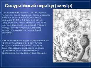 Силури́йский пери́од (силу́р) геологический период, третий период палеозоя: п