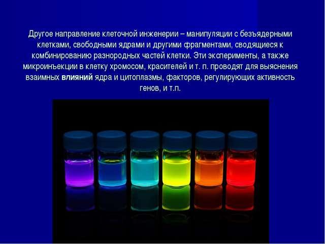 Другое направление клеточной инженерии – манипуляции с безъядерными клетками,...