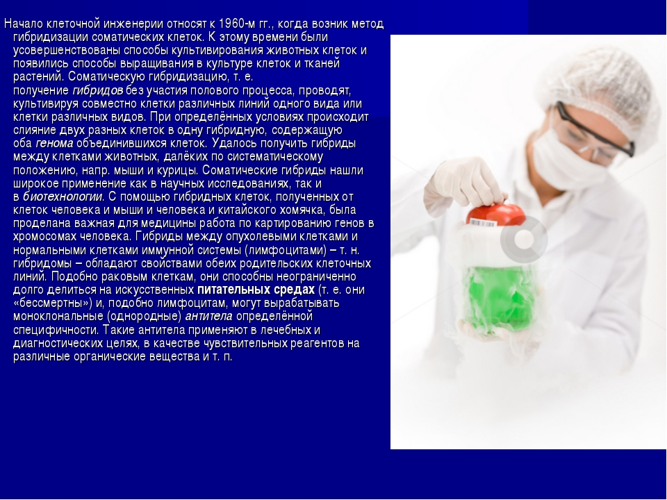 Начало клеточной инженерии относят к 1960-м гг., когда возник метод гибридиз...