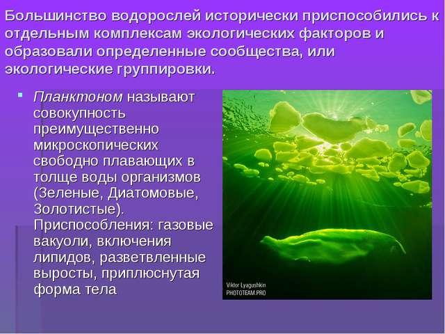 Большинство водорослей исторически приспособились к отдельным комплексам экол...