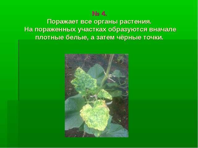 № 4. Поражает все органы растения. На пораженных участках образуются вначале...