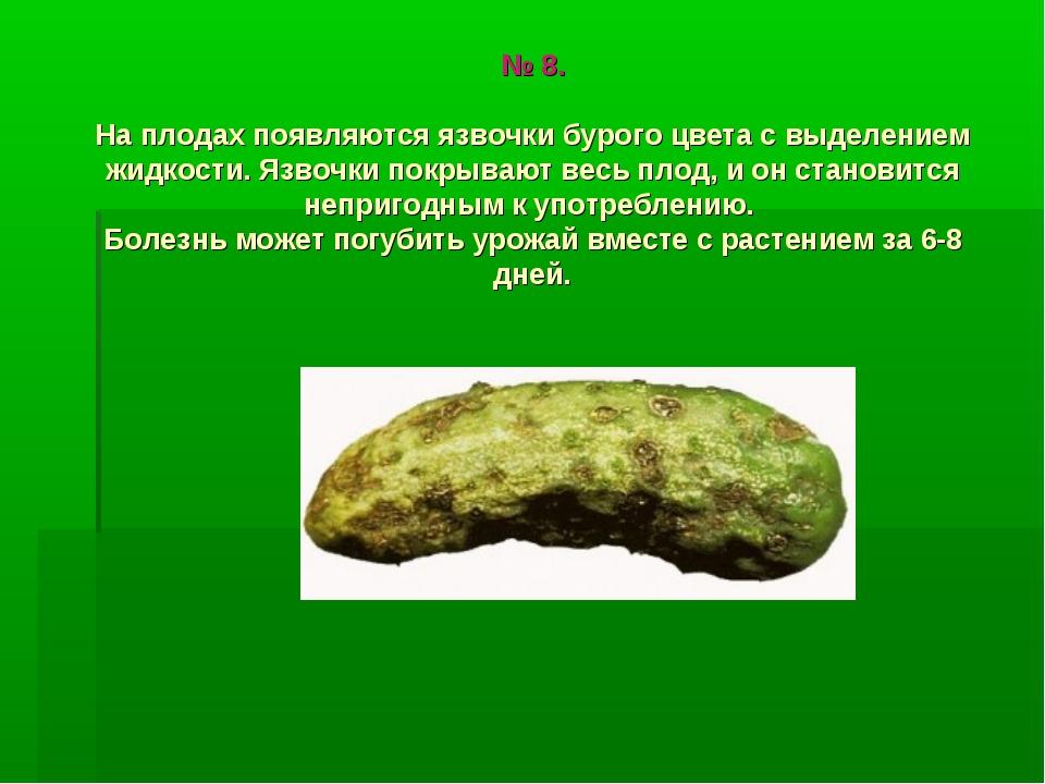 № 8. На плодах появляются язвочки бурого цвета с выделением жидкости. Язвочки...