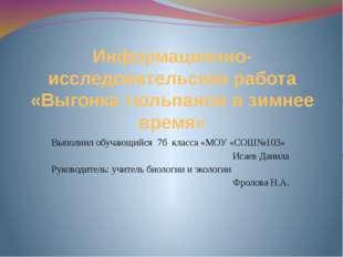 Информационно-исследовательская работа «Выгонка тюльпанов в зимнее время» Вып