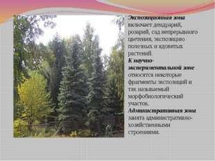 Экспозиционная зона включает дендрарий, розарий, сад непрерывного цветения, э