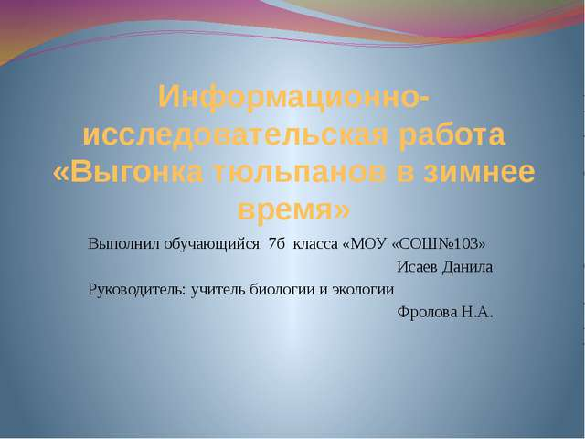 Информационно-исследовательская работа «Выгонка тюльпанов в зимнее время» Вып...