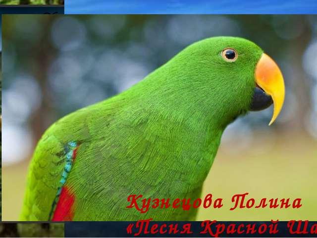 Кузнецова Полина «Песня Красной Шапочки»