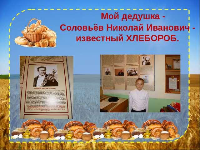 Мой дедушка - Соловьёв Николай Иванович - известный ХЛЕБОРОБ.
