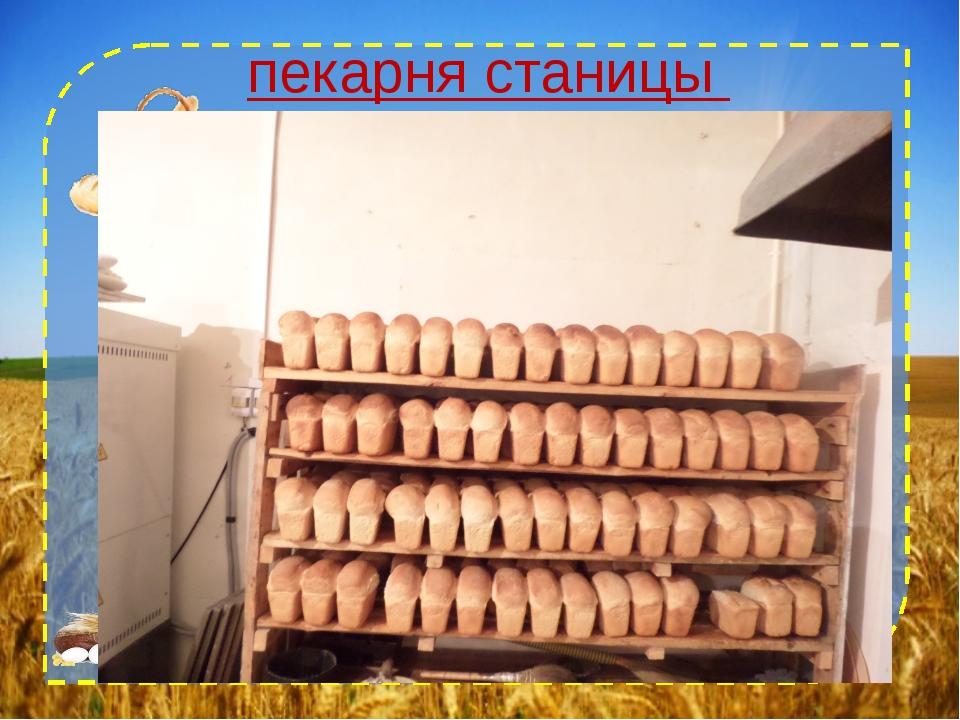 пекарня станицы Павлодольской