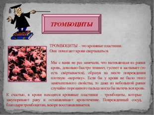 ТРОМБОЦИТЫ ТРОМБОЦИТЫ – это кровяные пластинки. Они помогают крови свертывать