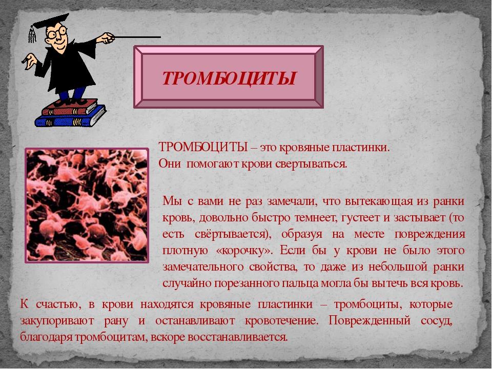 ТРОМБОЦИТЫ ТРОМБОЦИТЫ – это кровяные пластинки. Они помогают крови свертывать...