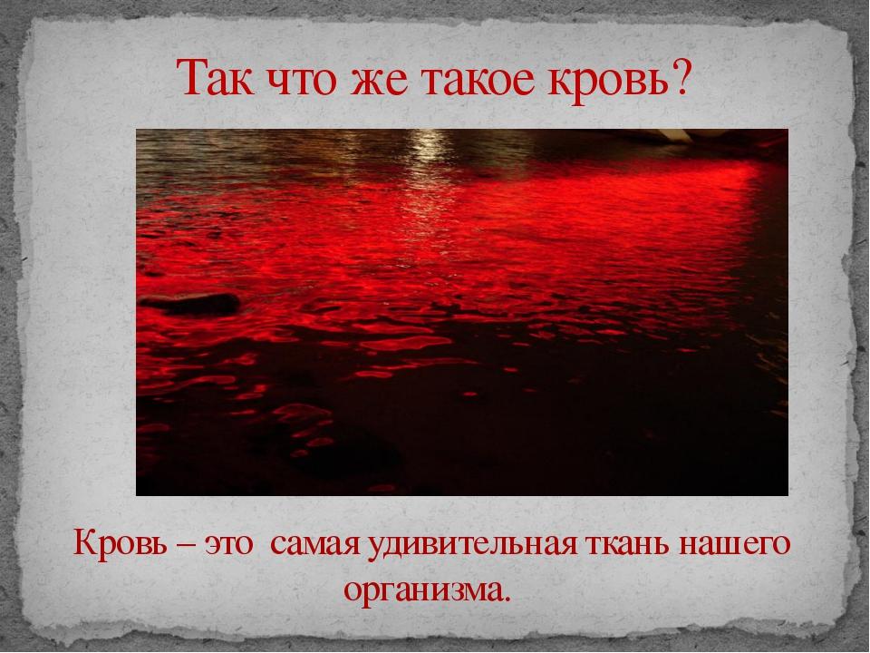 Так что же такое кровь? Кровь – это самая удивительная ткань нашего организма.