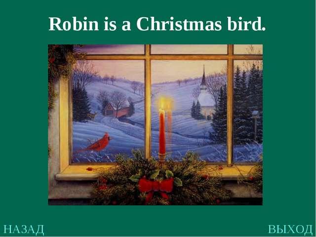 НАЗАД ВЫХОД Robin is a Christmas bird.