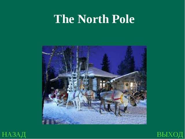 НАЗАД ВЫХОД The North Pole