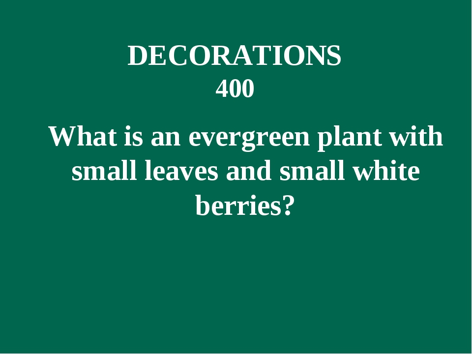 What is an evergreen plant with small leaves and small white berries? DECORA...