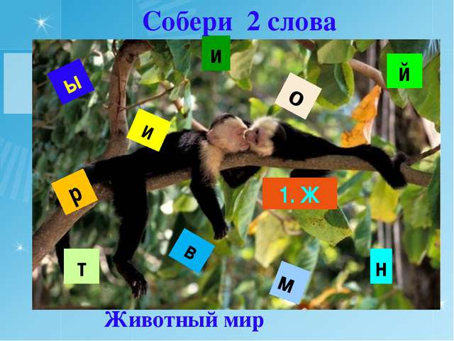 И и 1. Ж в о т н ы й м и р Животный мир Собери 2 слова