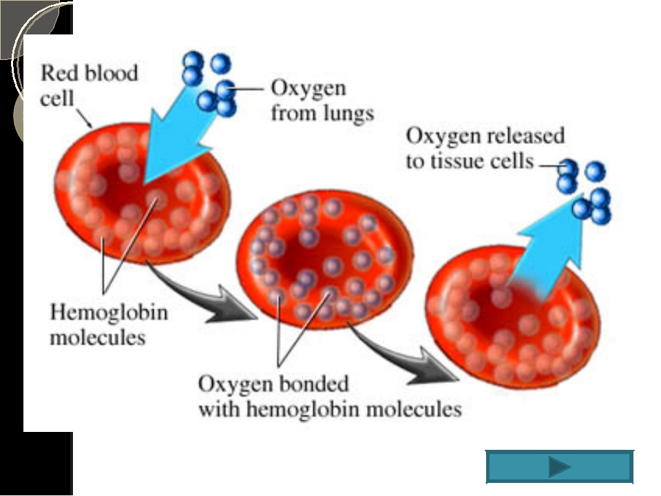 arterial blood gas essay Arterial blood gas case questions and answers in the space that follows you  will find a series of cases that include arterial blood gases each case is then.