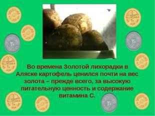 Во времена Золотой лихорадки в Аляске картофель ценился почти на вес золота