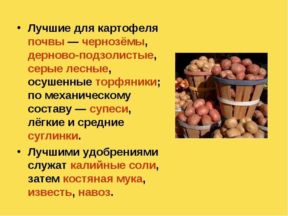 Лучшие для картофеля почвы— чернозёмы, дерново-подзолистые, серые лесные, ос...