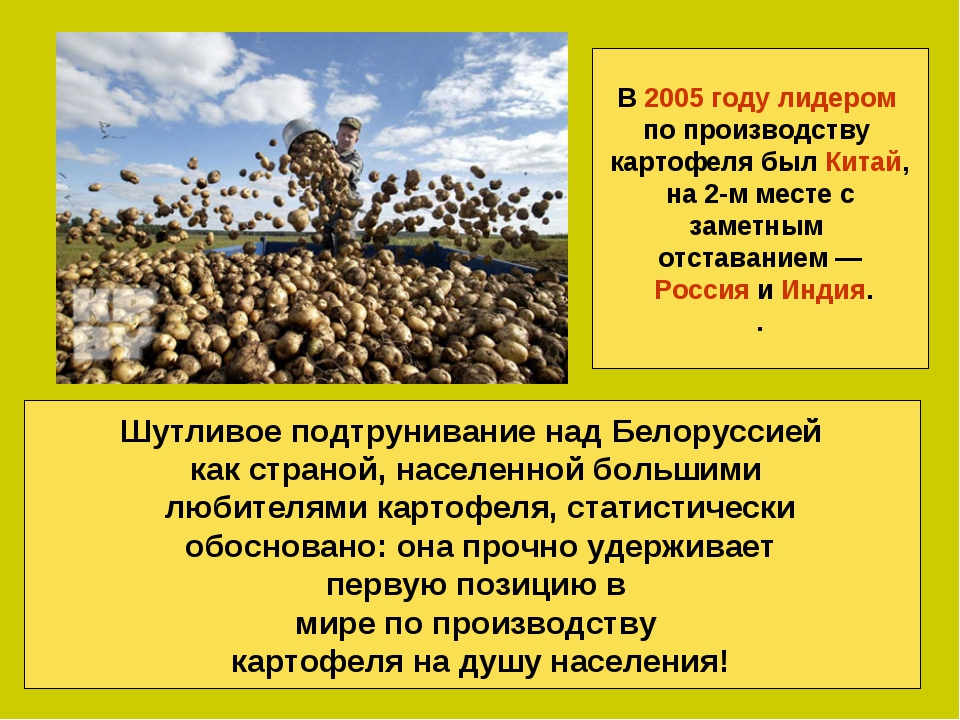 Шутливое подтрунивание над Белоруссией как страной, населенной большими любит...