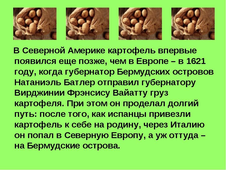 В Северной Америке картофель впервые появился еще позже, чем в Европе – в 16...