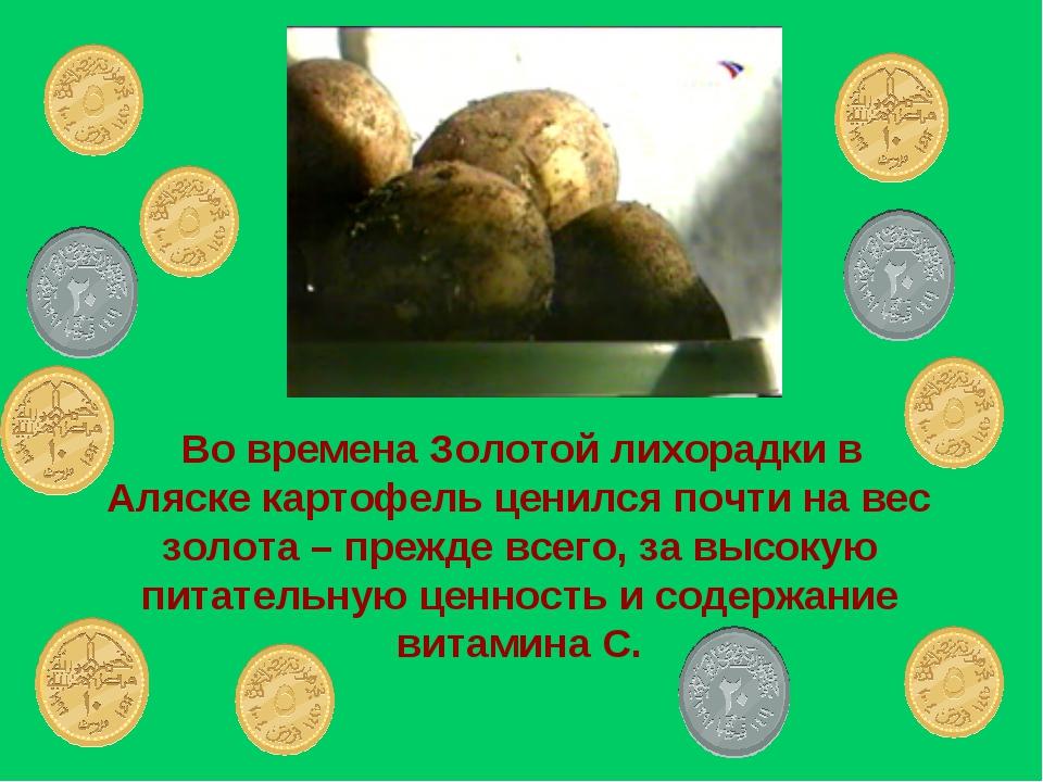 Во времена Золотой лихорадки в Аляске картофель ценился почти на вес золота...
