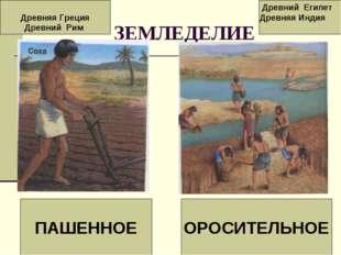 ЗЕМЛЕДЕЛИЕ ПАШЕННОЕ ОРОСИТЕЛЬНОЕ Древняя Греция Древний Рим Древний Египет Д