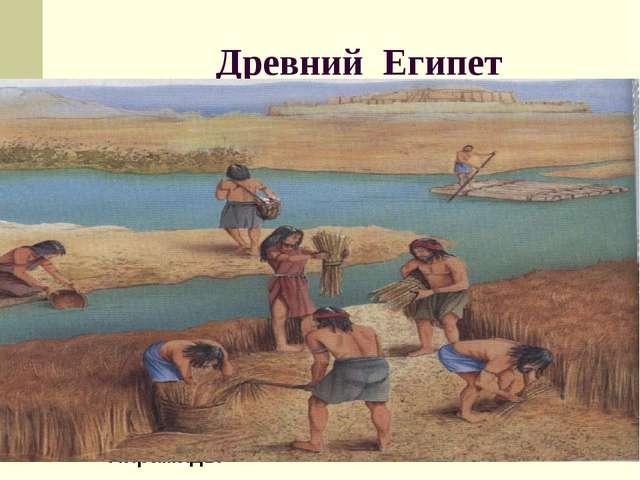 Древний Египет Пирамиды Изобретение колеса